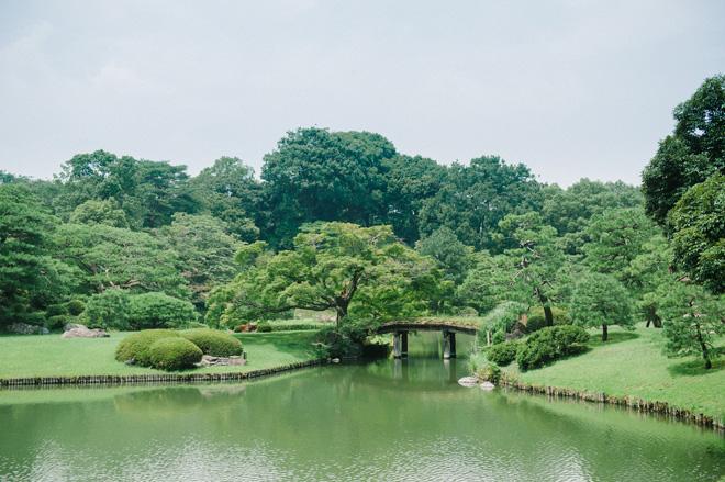 六義園。池、堀、山を築き、千川上水の水を引いて大泉水にした「回遊式築山泉水(かいゆうしきつきやませんすい)」公園として有名