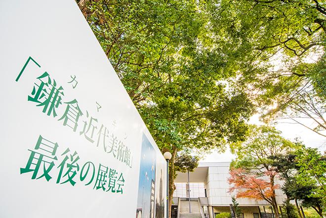 鎌倉八幡宮の自然景観を取り込んだ白亜のモダンな建物。