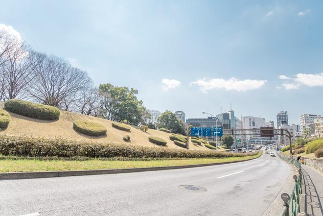 奥渋谷の街並みを抜けると、代々木公園の自然が待ち受けています。