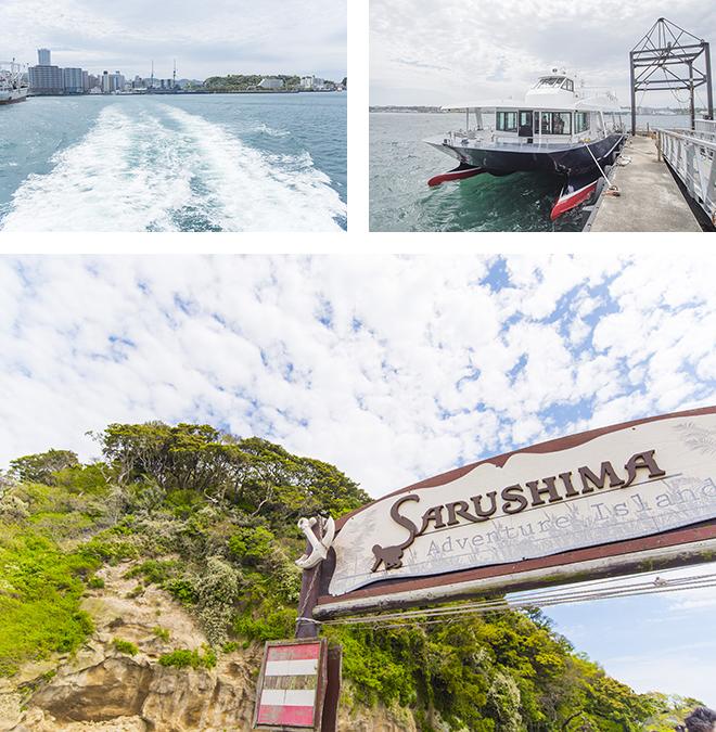 横須賀の三笠桟橋からフェリーで約10分、自然がいっぱいの猿島に到着します。