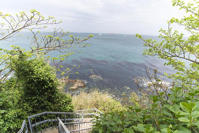 とても東京湾とは思えないエメラルドグリーンの美しい海。