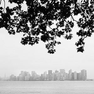 作品名:Manhattan View 作家名: Nina Papiorek