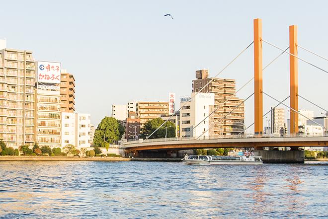 隅田川の下をくぐる水上バスとその上を飛ぶかもめ。まるでセーヌ川のような眺め。
