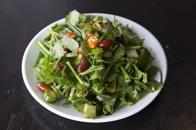 老虎菜 700円 香菜とキュウリ、青唐辛子、ナッツのサラダ。 爽やかな辛さと香菜の組み合わせがたまらない。