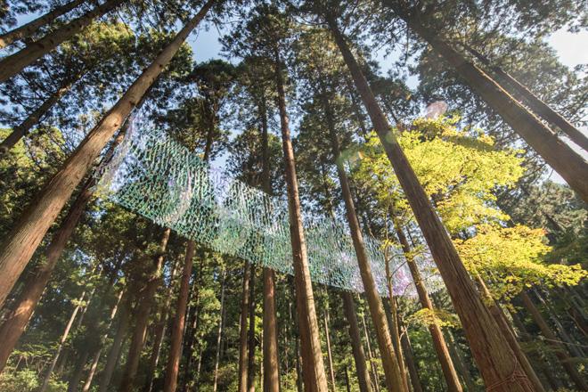 「杜の蜃気楼」森山茜 約6千枚の極薄フィルムが、山頂から吹いてくる風になびきます。