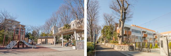(左)渋谷区立広尾北公園。(右)その反対側は西麻布全域が学区になる高陵中学校。