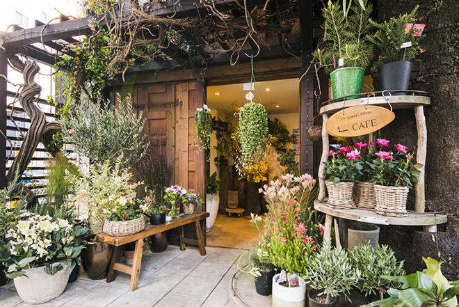 1階はフラワーショップ、フルール・ユニバーセル。可愛らしい鉢植えが並びます。