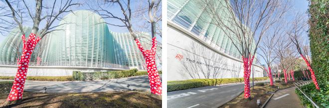 国立新美術館の敷地内でのインスタレーション「木に登った水玉」(2017)。