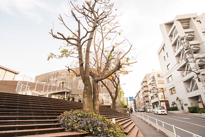 オープンしたばかりのla kagu(ラカグ)も見える神楽坂上。ネーミングは、神楽坂に住むフランス人たちが「カグラザカ」は発音しにくく、「ラカグ」と呼ぶことがあるというエピソードから採用されたとか。近くにはお屋敷街や矢来能楽堂もあります。