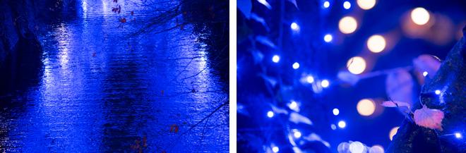 川面も青く染まる神秘的なイルミネーションです。
